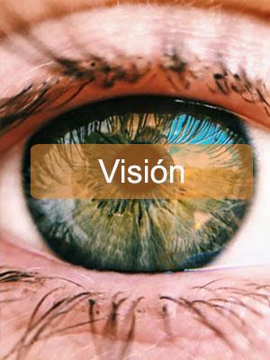 Vision de AFEMCE